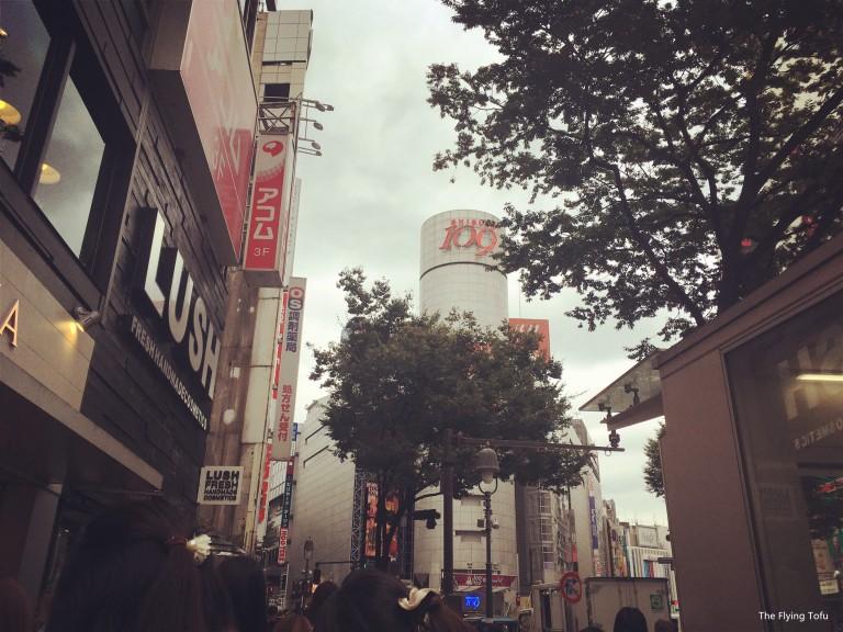 IMG_1217_副本